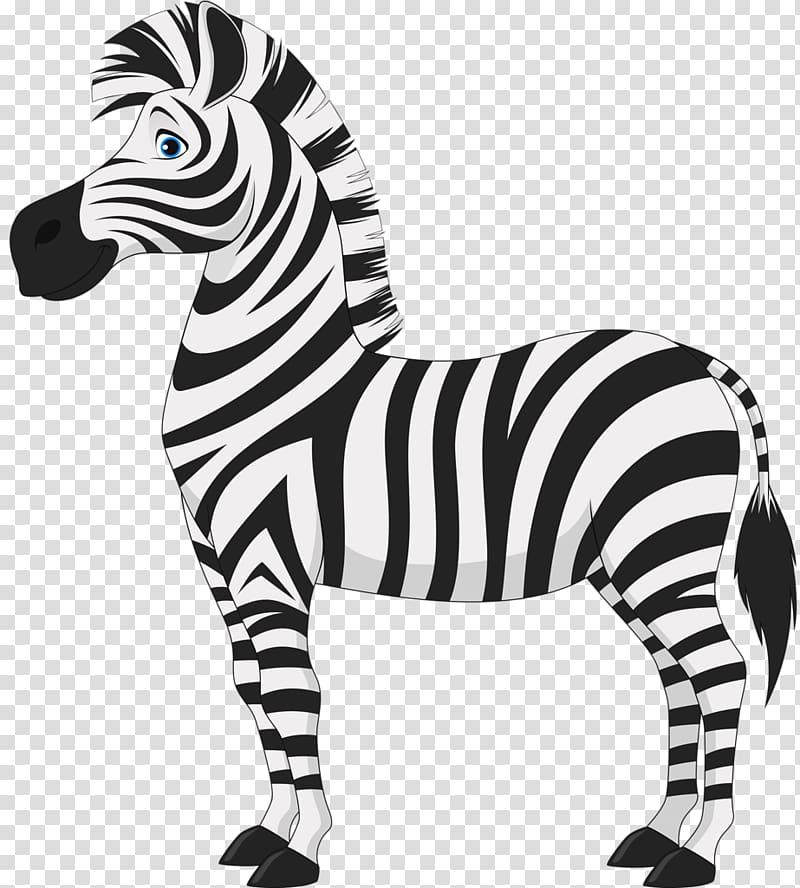 Sunrise Pediatric Neurology Foal Zebra , cartoon zebra.
