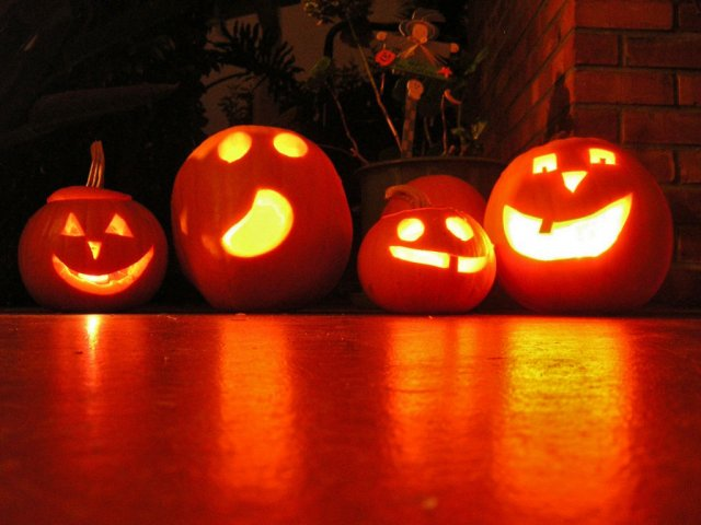 Pumpkins & Carvings.