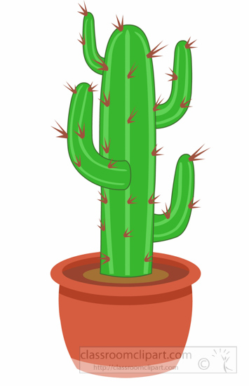 Cactus Clipart : cactus.