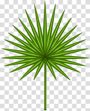 Casamigos PNG clipart images free download.