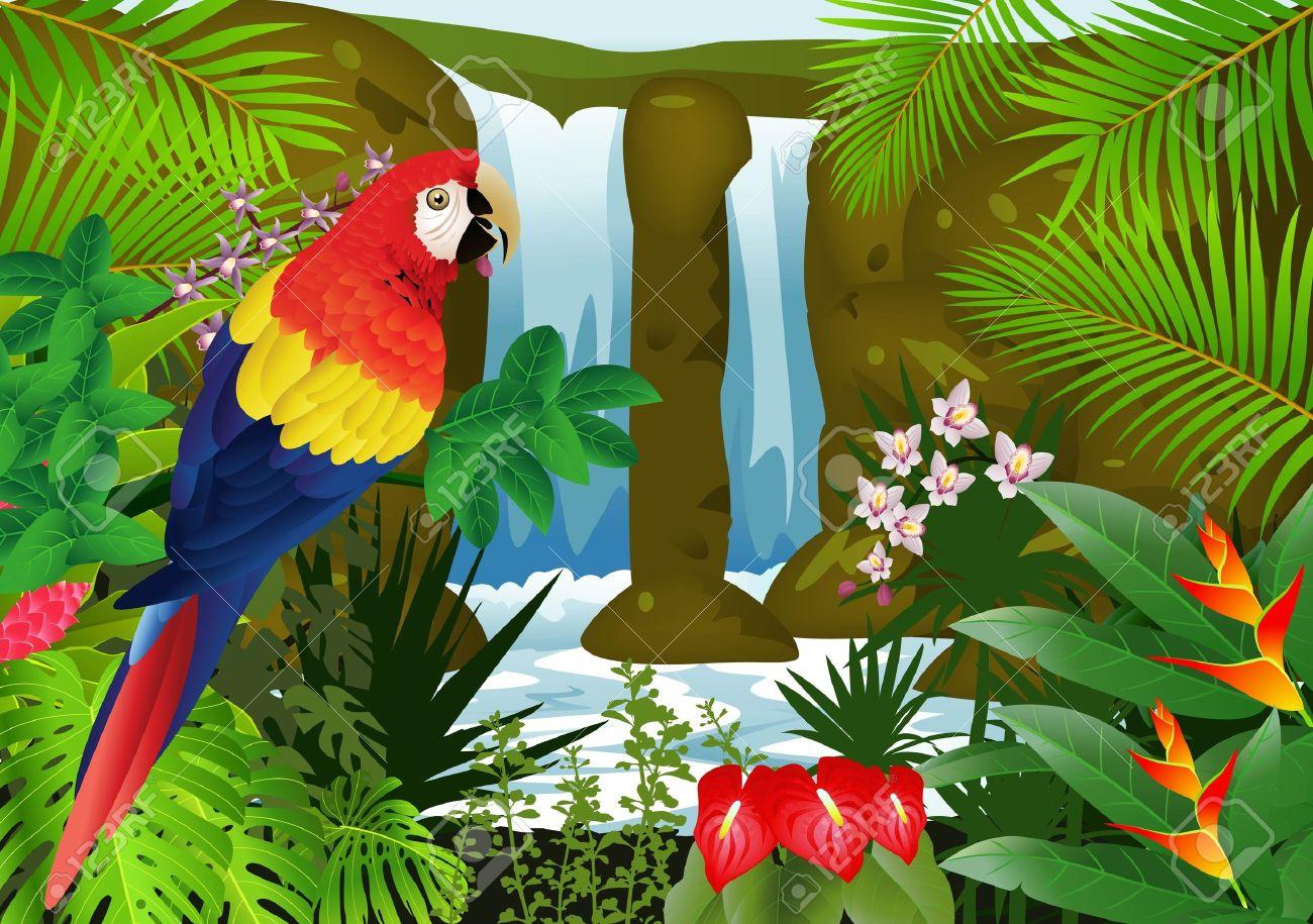 Illustrazione Di Uccello Macaw Con Sfondo Cascata Clipart Royalty.
