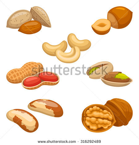 Nutshell Icon Stock Photos, Royalty.