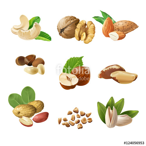 "Vector illustration mix of different types nuts"" Stock image and."