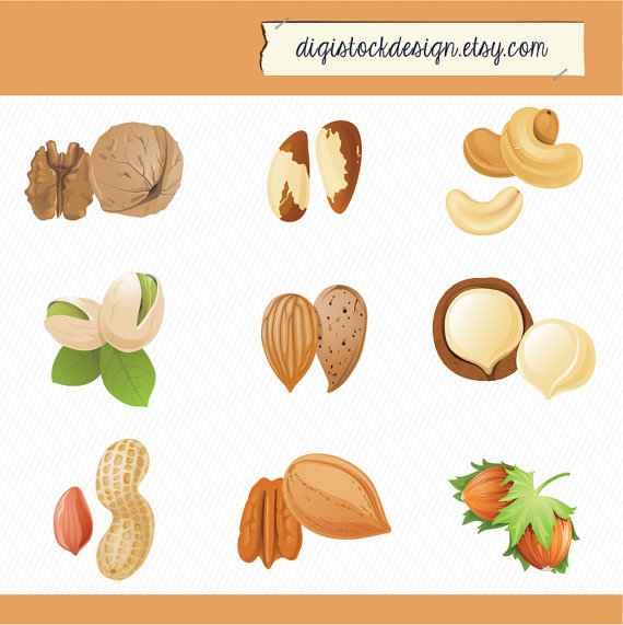 Nuts Illustration Clipart. Peanuts cashews by digistockdesign.