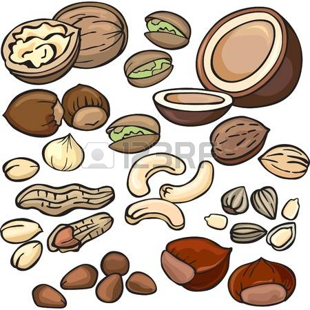 928 Cashew Nuts Cliparts, Stock Vector And Royalty Free Cashew.