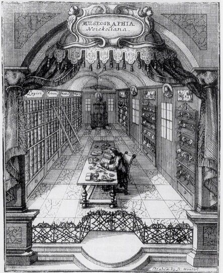 Illustration of the Collecting Room. Caspar Friedrich Neickel's.