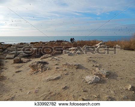 Stock Photo of Shore of the Caspian Sea k33992782.