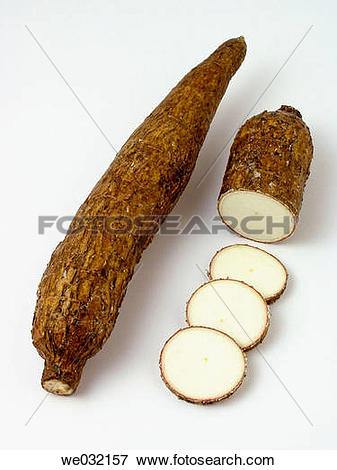 Picture of Cassava root we032157.