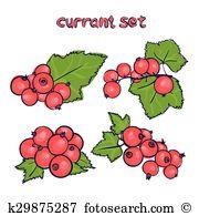 Cassis Clipart EPS Images. 18 cassis clip art vector illustrations.