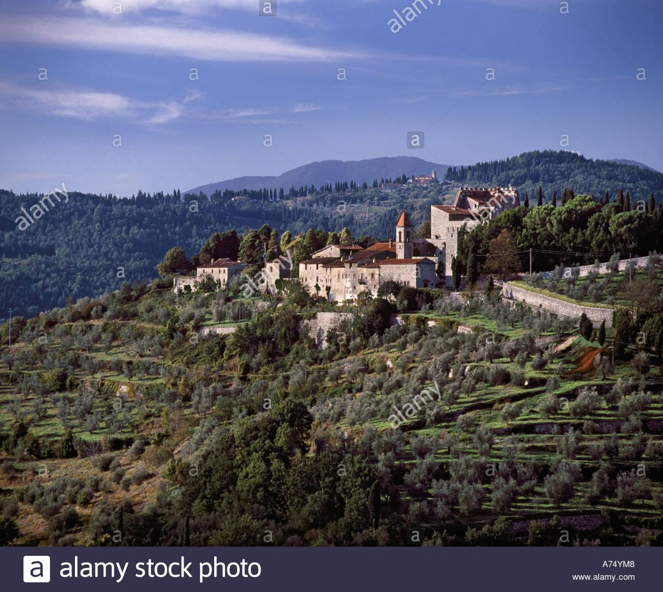 Olive Groves Surround The Castello Di Nipozzano Property Of.