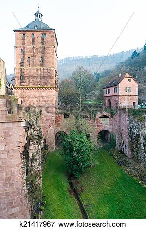 Picture of The tree in The ruin tower of Heidelberg castle in.