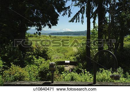 Stock Photography of Castle Rock, WA, Washington, Mount St. Helens.