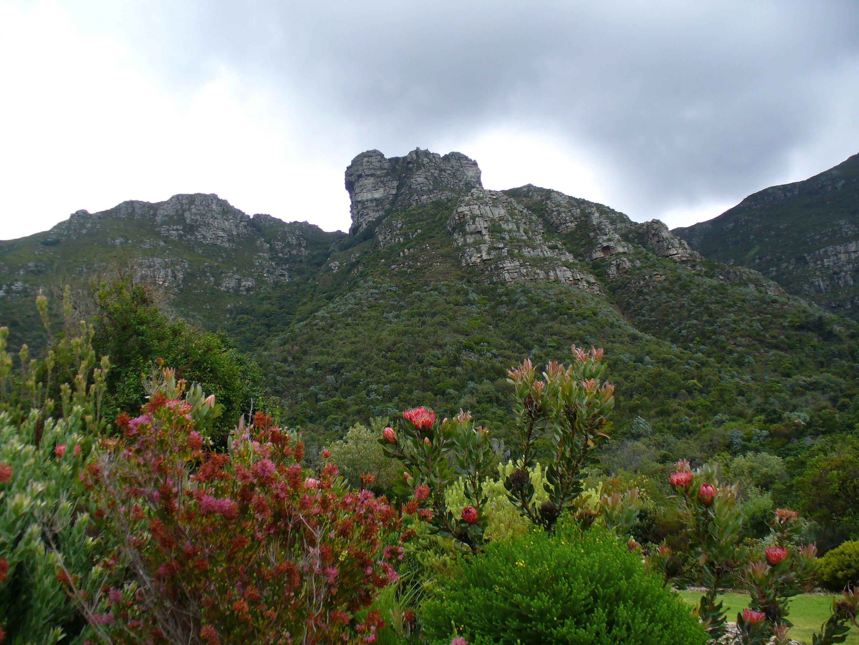 Castle Rock landscape in Cape Town, South Africa.