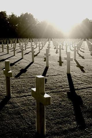 Facebook War Casualties pictures, War Casualties photos, War.