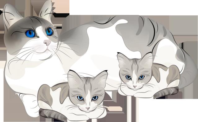 Kitten clipart mama cat, Kitten mama cat Transparent FREE.