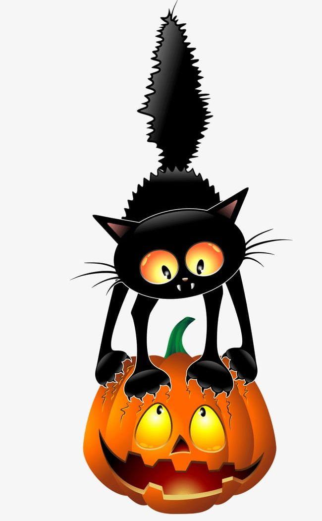 Black Cat Pumpkin PNG, Clipart, Animals, Black, Black Cat.