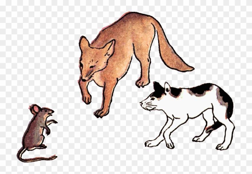 Rat Clipart Cat Rat.