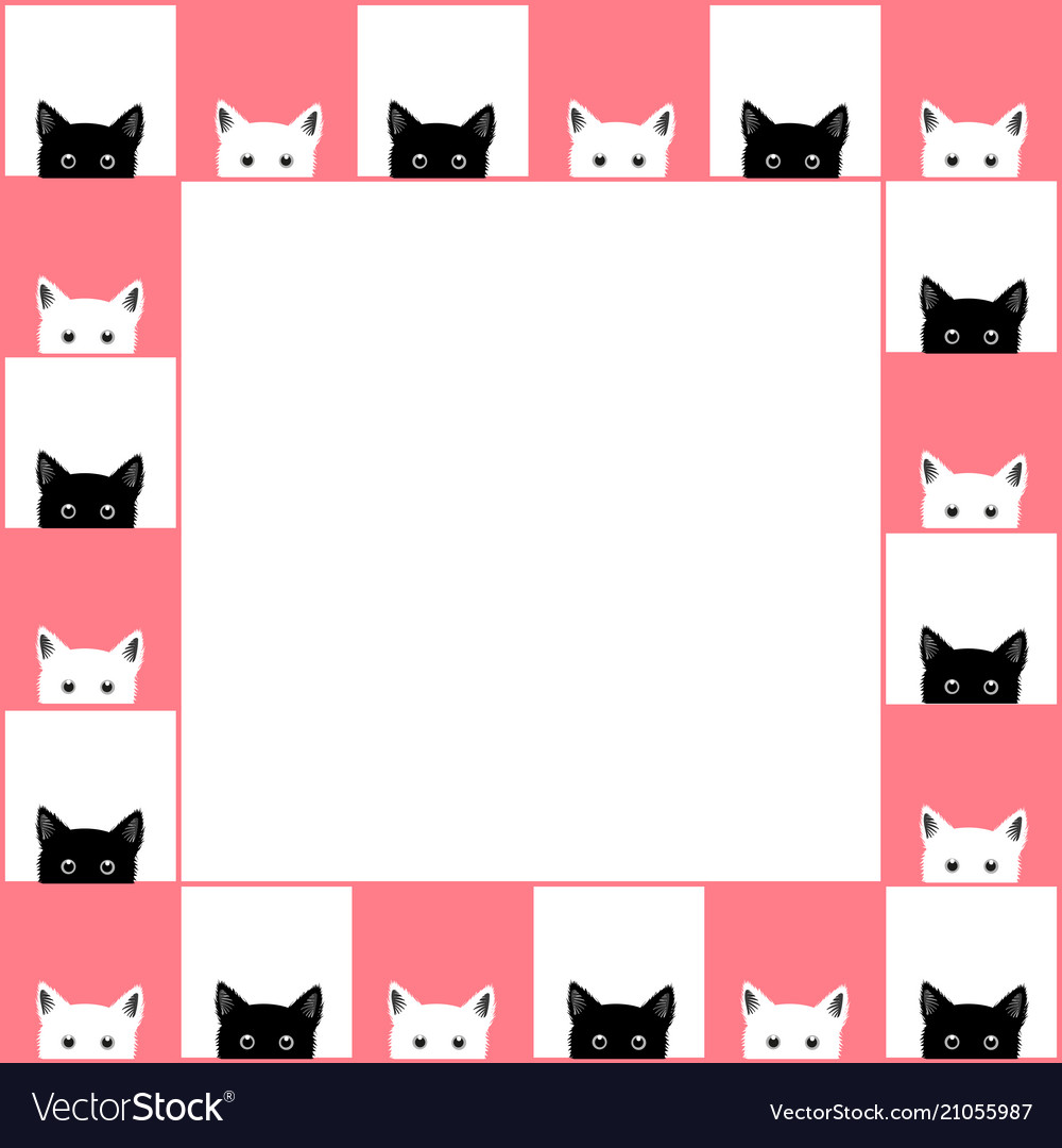 Black white cat chess board border pink background.