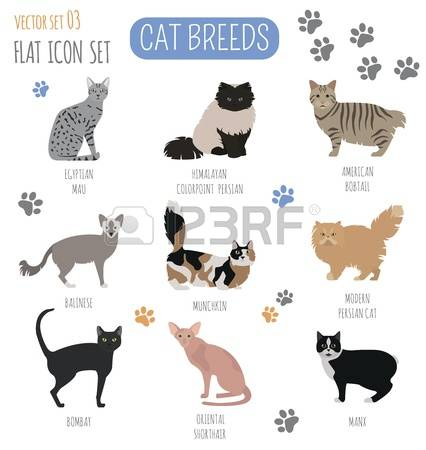 119 Manx Stock Vector Illustration And Royalty Free Manx Clipart.
