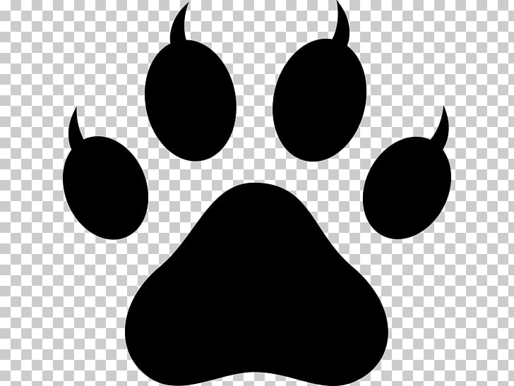 Dog Polydactyl cat Paw , claw PNG clipart.