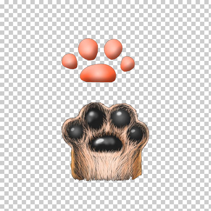 Cat Claw Dog Computer file, Furry cat claws PNG clipart.