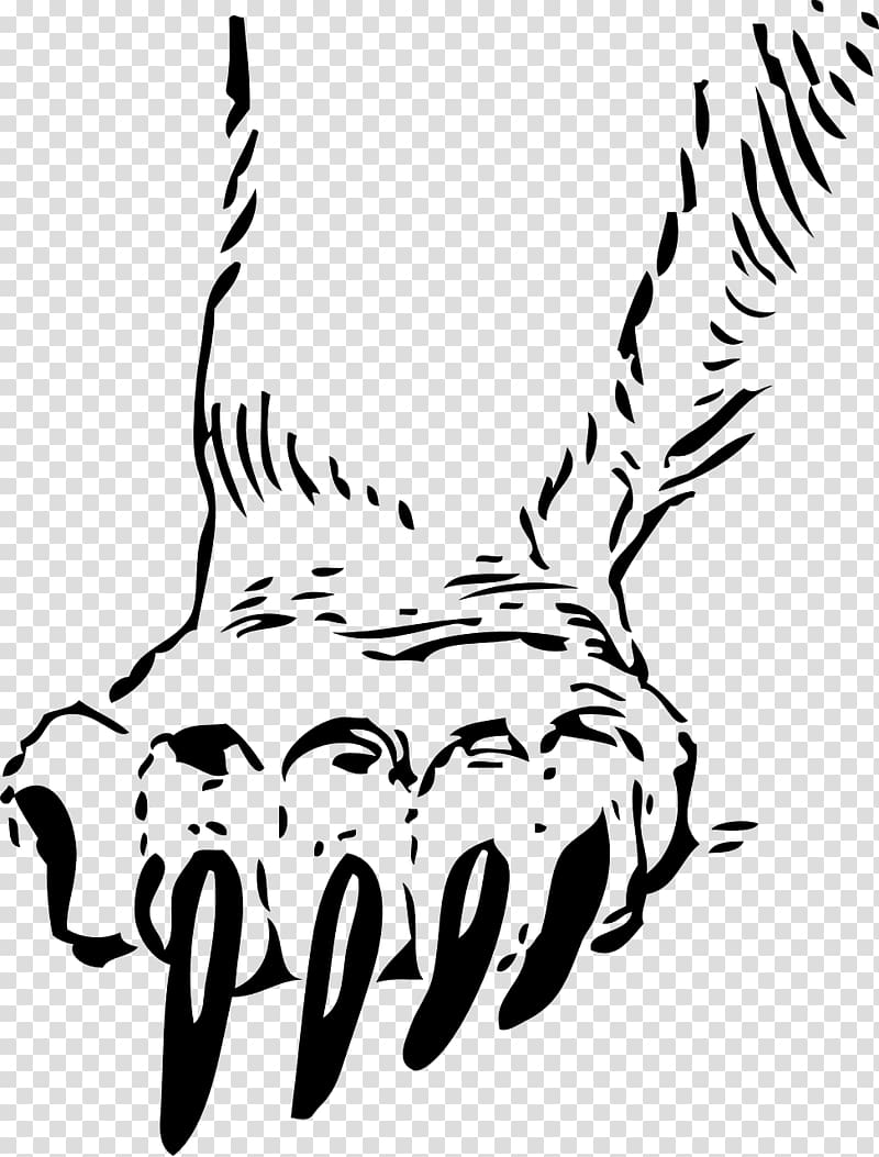 Grizzly bear Paw Decal , cat claw transparent background PNG.