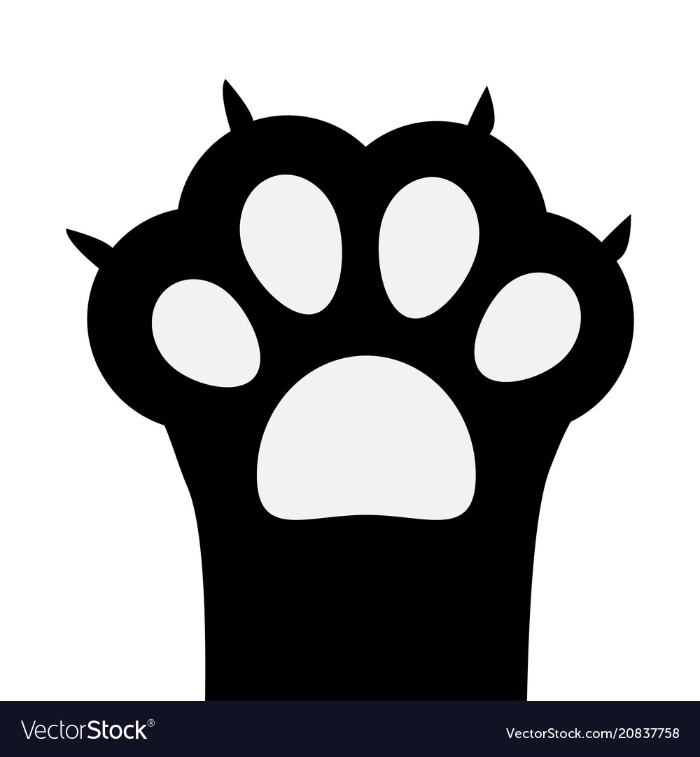 Big black cat paw print leg foot with nail claw.