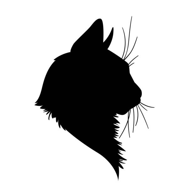Best Cat Family Illustrations, Royalty.