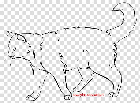 Cat outline, white and black cat illustration transparent.