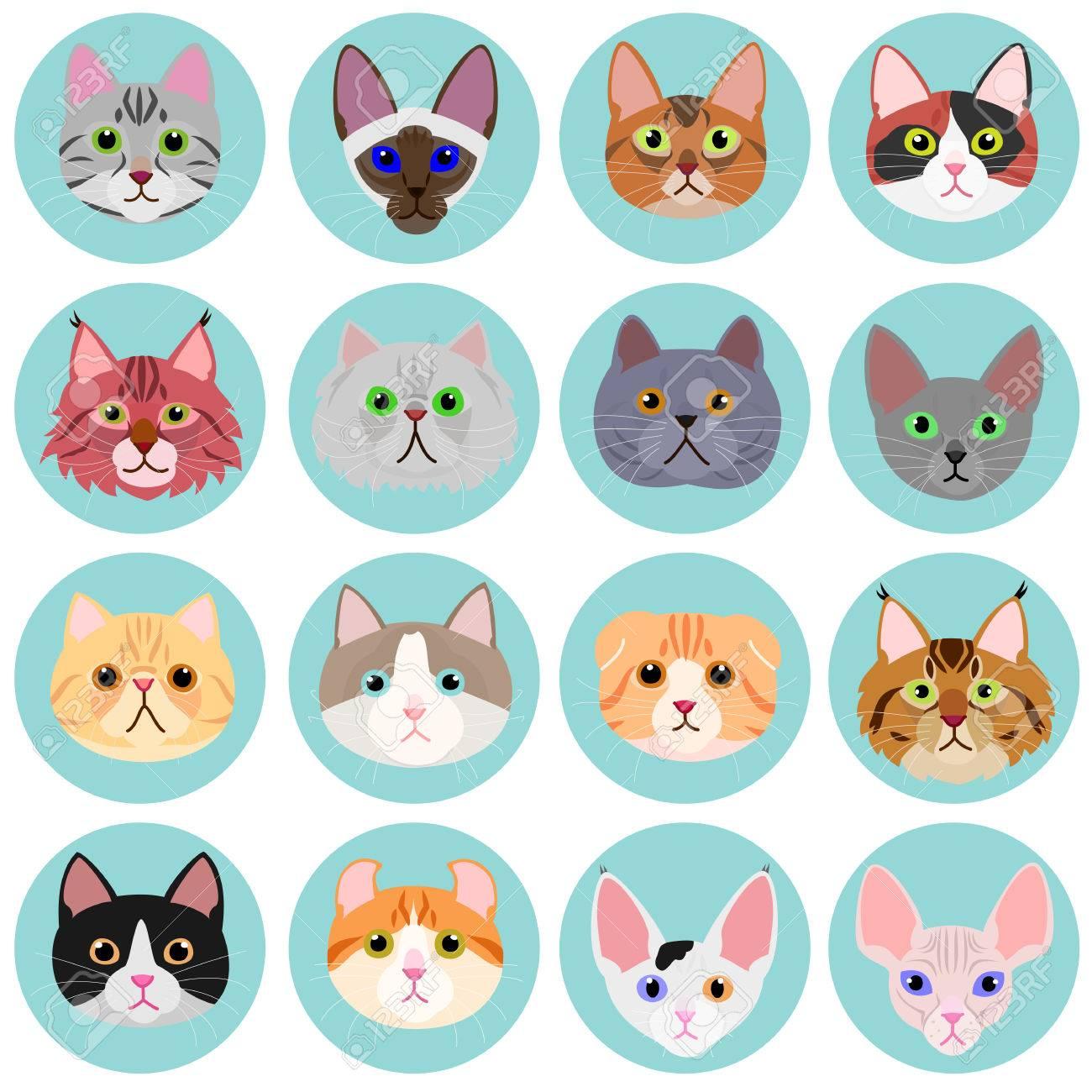 cat face set with circle.