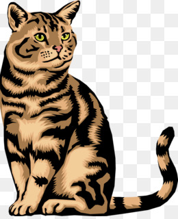 Wild Cat PNG and Wild Cat Transparent Clipart Free Download..