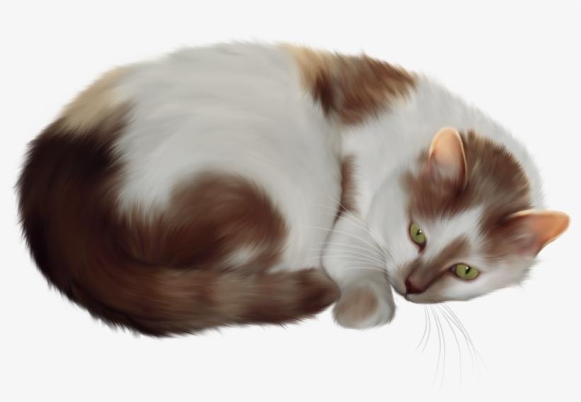 Transparent Cat Clipart.