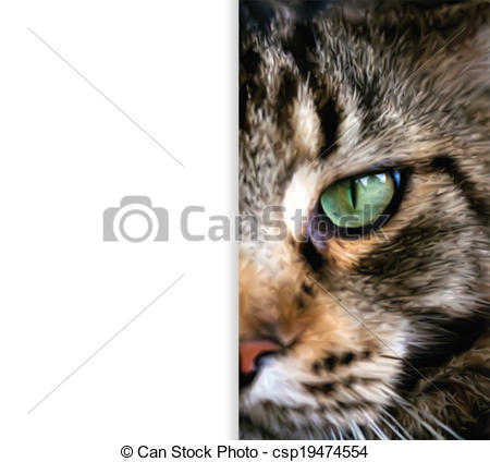 Clipart Vector of Close up half face of Maine Coon cat. Vector.