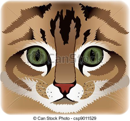 Vector Clip Art of Close up of cat face csp9011531.