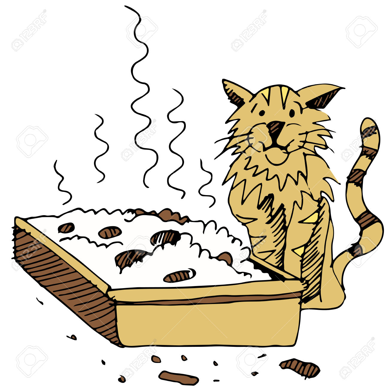 An Image Of A Dirty Litter Box And Cat. Royalty Free Cliparts.