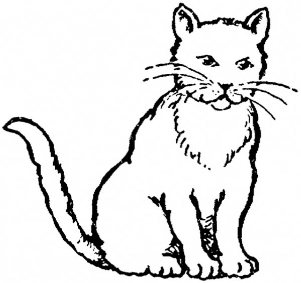 Free Cat Silhouette Drawing, Download Free Clip Art, Free.