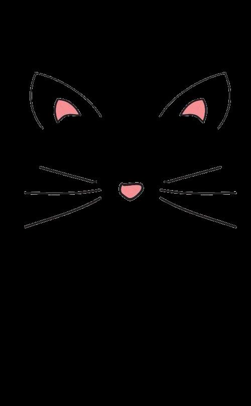 Whiskers Kitten Domestic short.