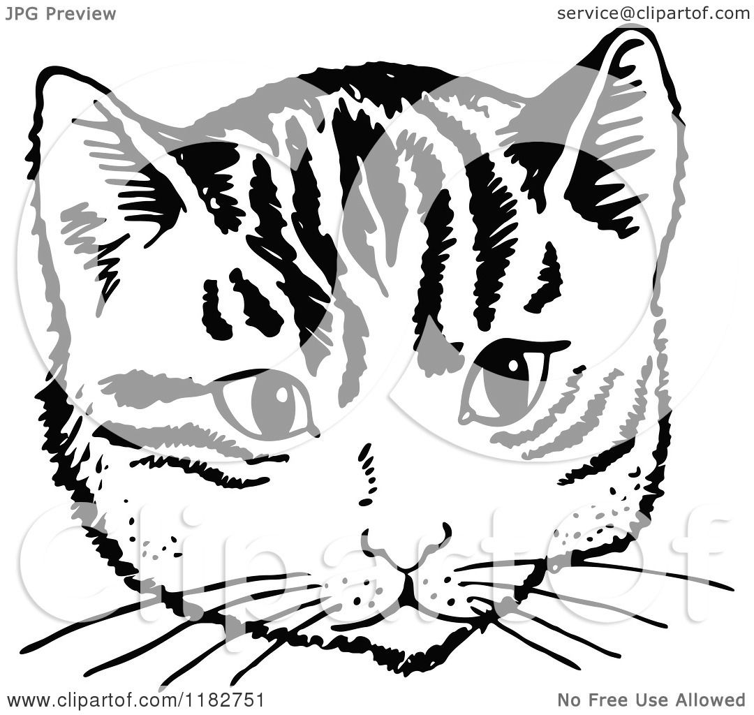 Clipart of a Black and White Cat Face.