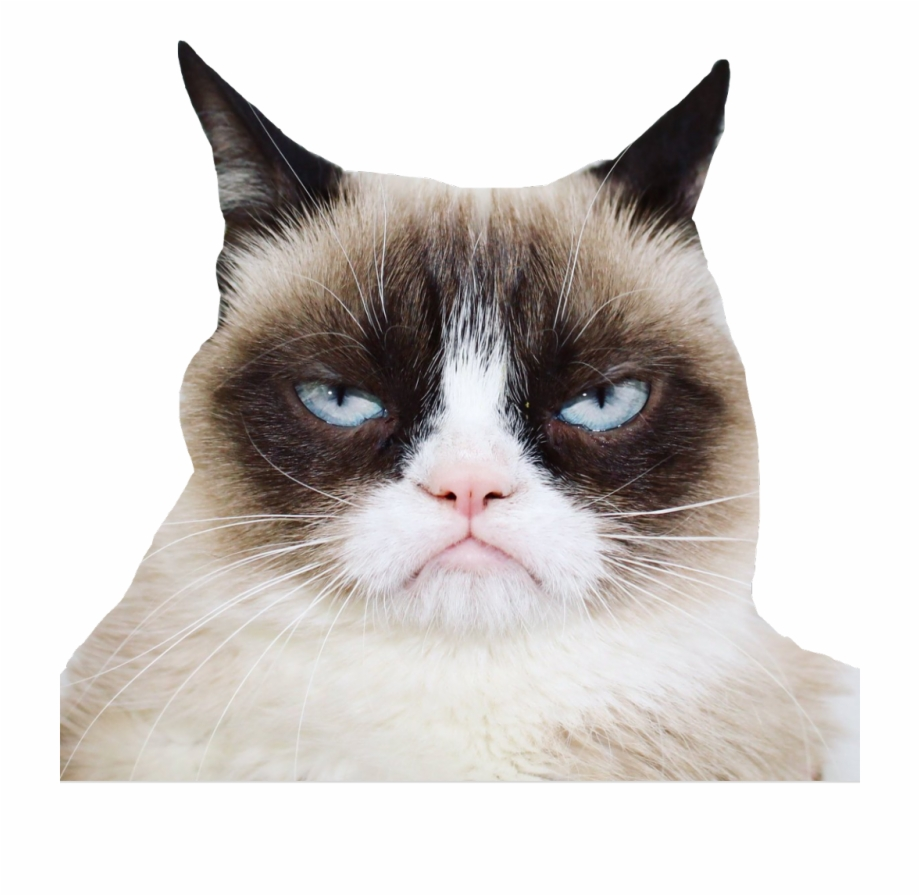Grumpycat Sticker.
