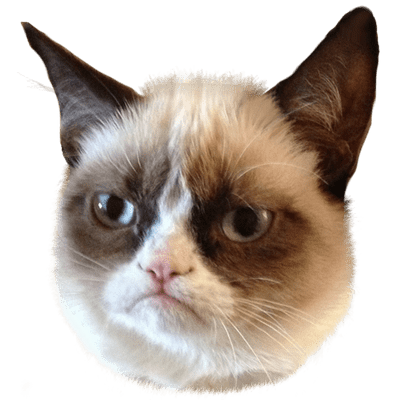 Grumpy Cat transparent PNG images.