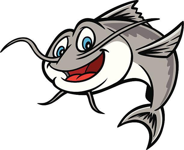 Best Catfish Illustrations, Royalty.