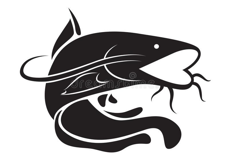Catfish Stock Illustrations.