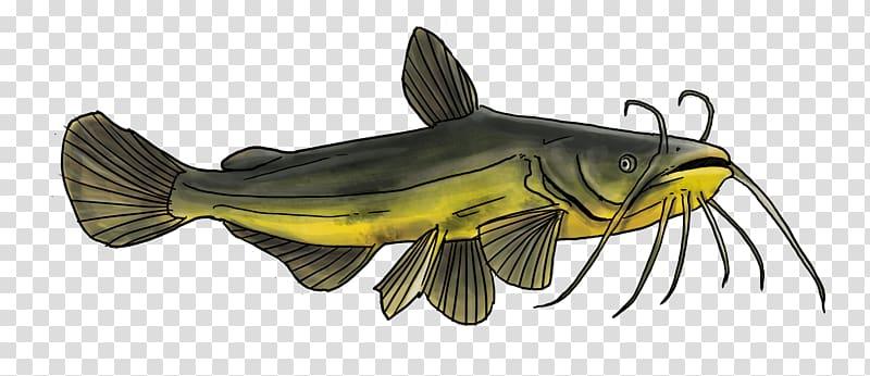 Goldfish Catfish Fishing Freshwater fish, black spots.