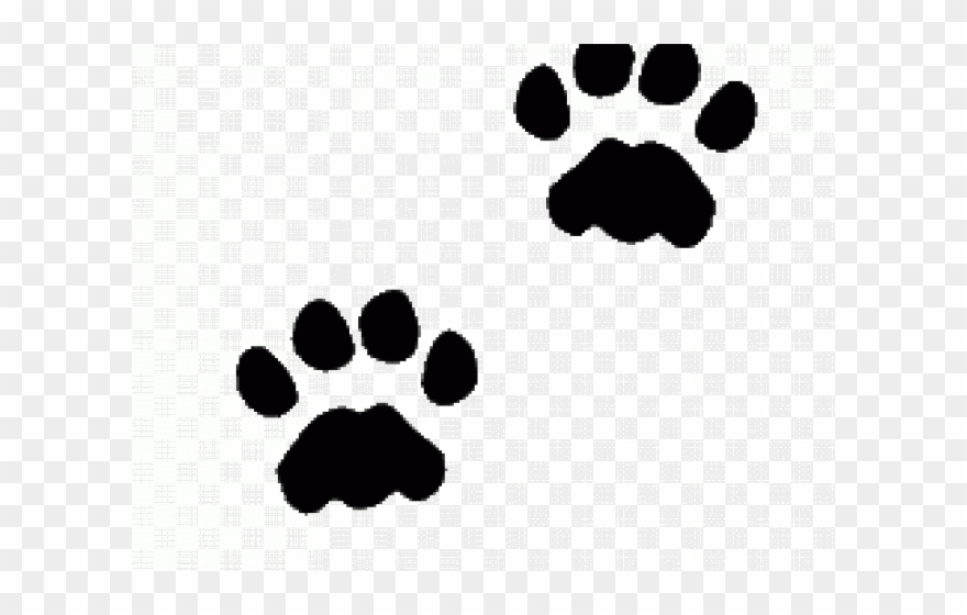 Cat Paw Prints Images.