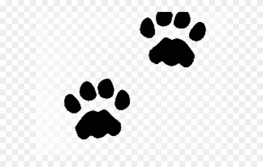 Cat Paw Prints Images.