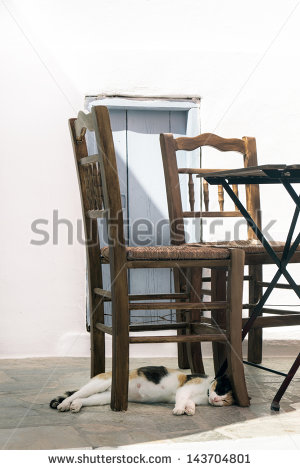 Cat Under Table Stock Images, Royalty.