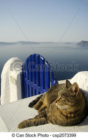 Stock Photographs of Cat on Gate in Santorini, Greece.