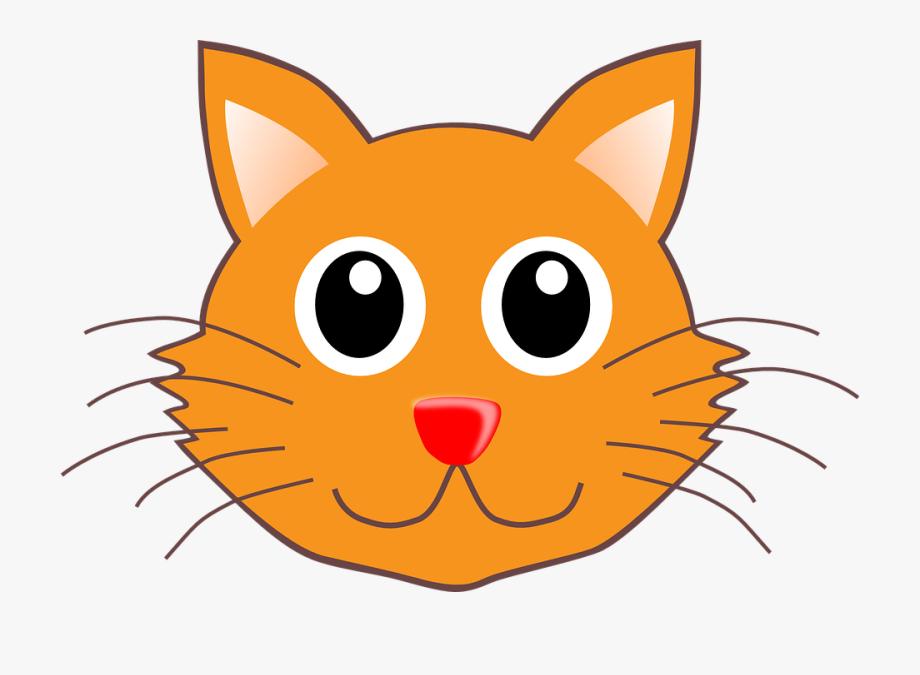 Cat Head Portrait Cute Face Feline Pet Animal.