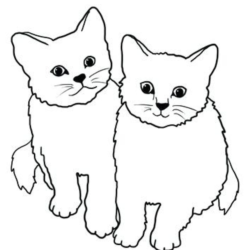 Cat Drawing Clipart at PaintingValley.com.