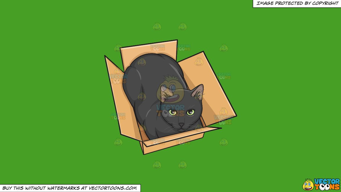 Clipart: A Black Cat In A Box on a Solid Kelly Green 47A025 Background.